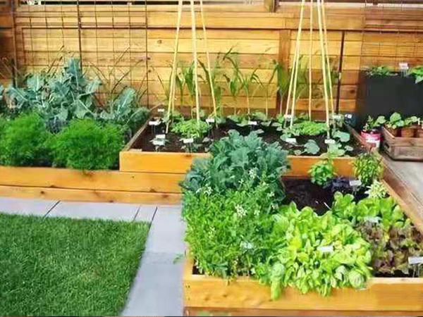 成都露台花园设计施工