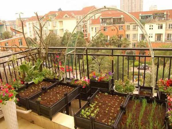 成都屋顶花园设计施工